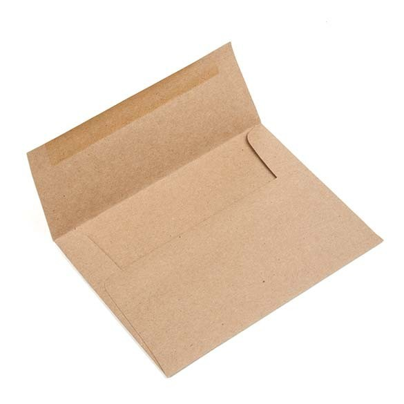 Brown Bag Envelope