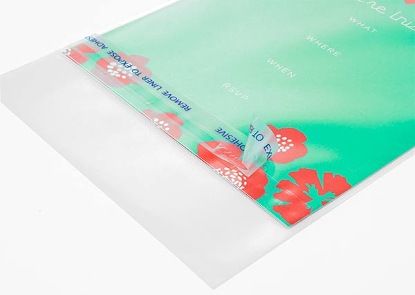 Protective Closure Clear Stationery Sleeves