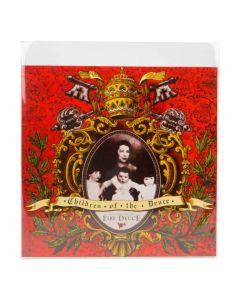 crystal clear album sleeve