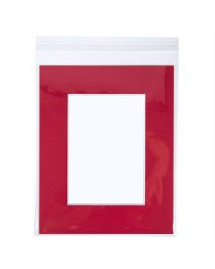 Adhesive flap bag with photo mat