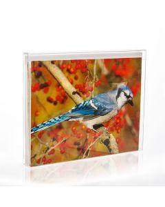 Clear greeting card box