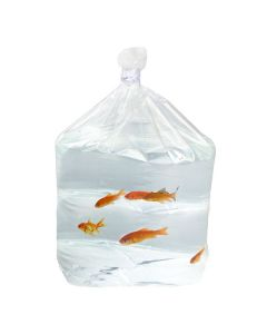clear square bottom bag with fish