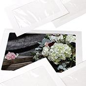 Full View Envelopes