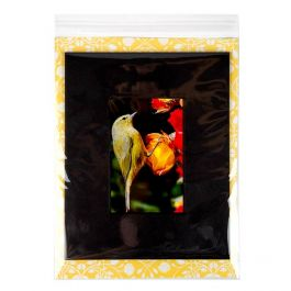 """8 15/16"""" x 11 1/4"""" + Flap, Crystal Clear Bags® (100 Pieces) [B811]"""
