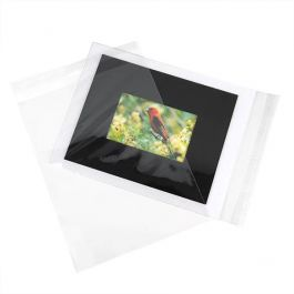 "9 7/16"" x 12 1/4"" + Flap, Value Crystal Clear Bags® (250 Pieces) [VL9]"
