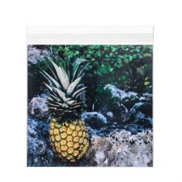 """8 1/4"""" x 8 1/16"""" + Flap, Crystal Clear Bags® (100 Pieces) [B88S]"""