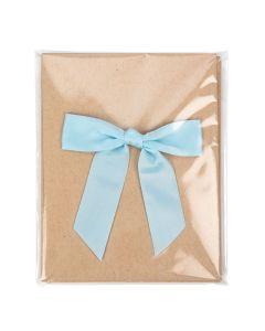 "4 7/8"" x 6"" + Flap, Premium Eco Clear Bags (100 Pieces) [GC5B1]"