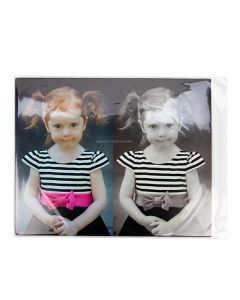 "16 7/16"" x 20 1/4"" protective sleeve for photo"