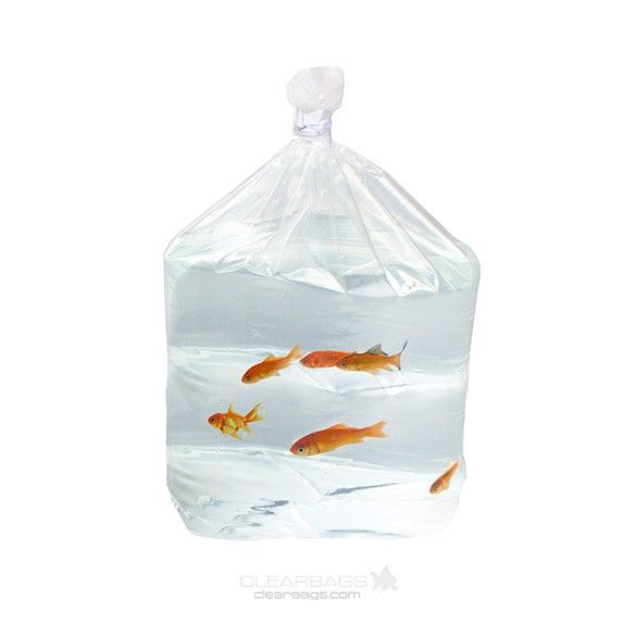 Leak Proof Square Bottom Bag With Fish